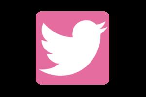 Twitter_Pink-01